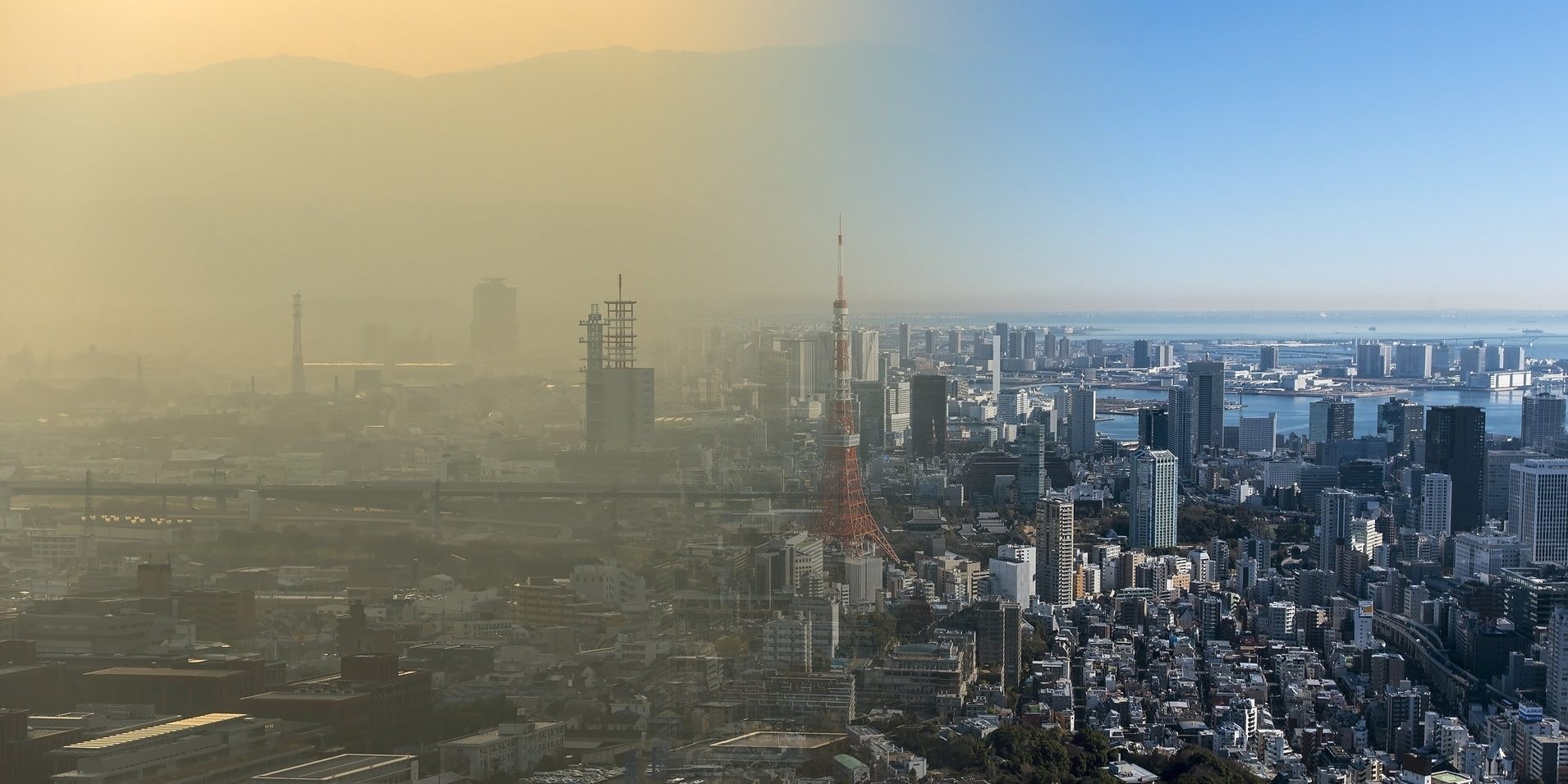 Air Quality Data and the Pandemic