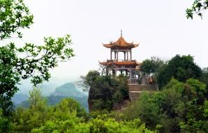 a pagoda in a plush Beijing forest