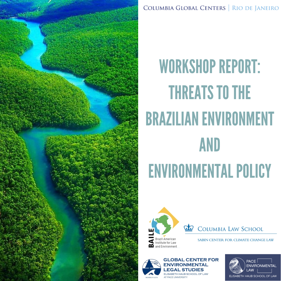Workshop_Report_Threats to the Brazilian Environment