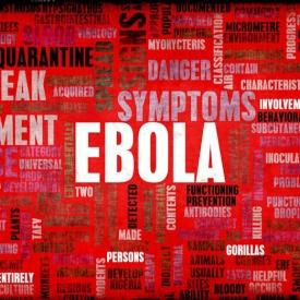 Strategies for Fighting Ebola: A Columbia University Summit to Help End the Epidemic